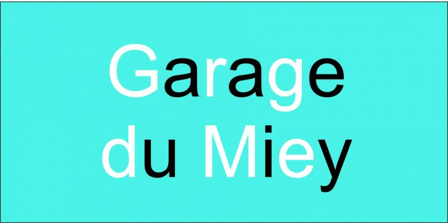 R seau d 39 entreprises d 39 am nagements de v hicules pour pmr for Garage renault privas